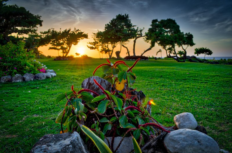 Magical sunsets on the lawns of Villa 1. Photo credit to past guest, Mark D