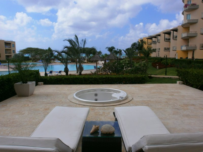 Fantastic pool AND ocean view from your private garden and patio!