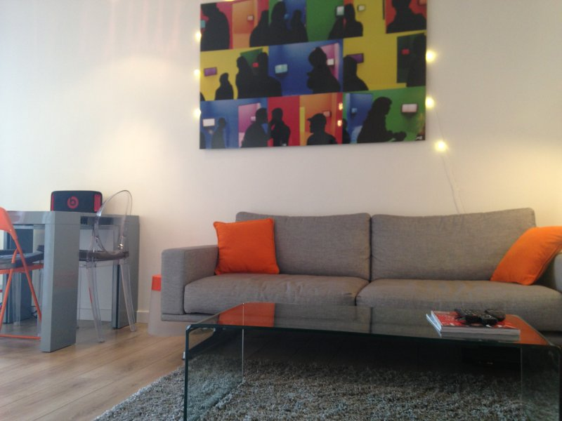 Very charming T2 appartment avec balcony Lyon, holiday rental in Caluire et Cuire