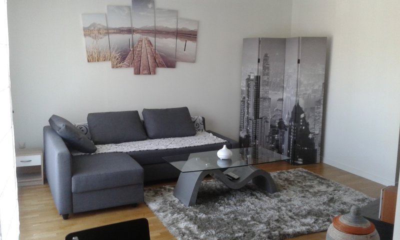 Appartement spacieux proche Paris, holiday rental in Chatenay-Malabry
