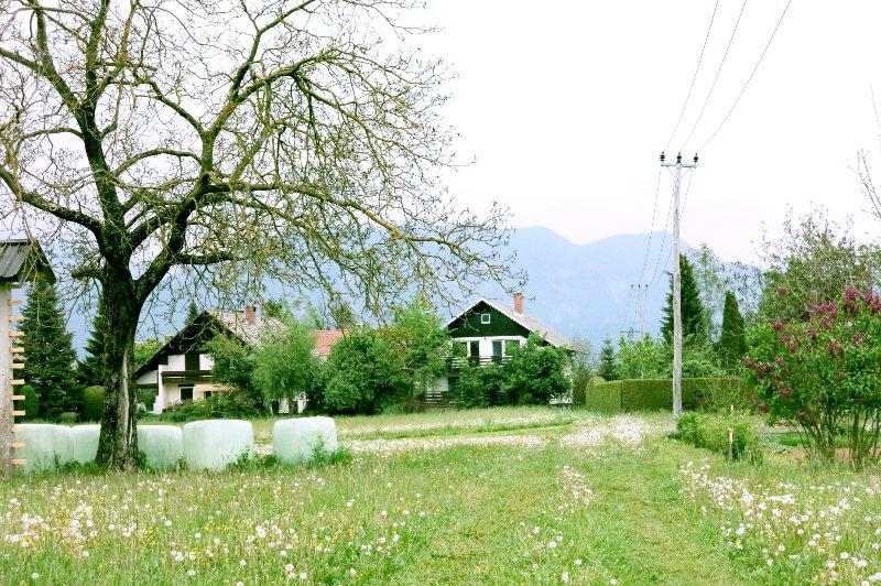 Villa Koritno