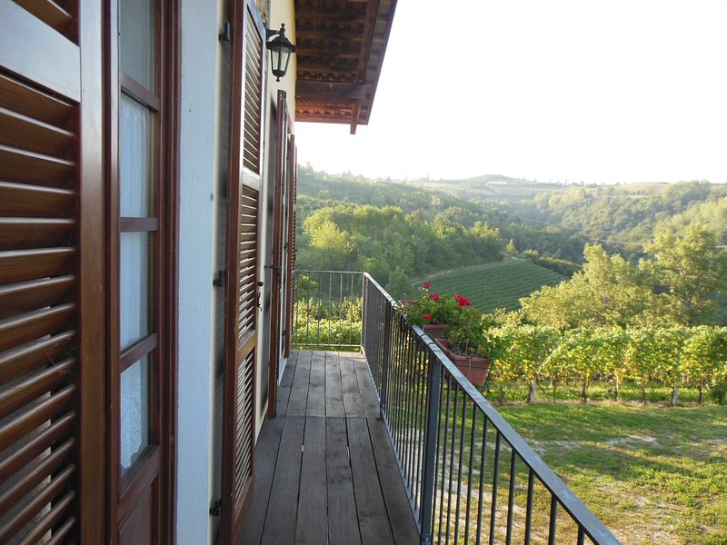 The studio is surrounded by hills covered with vineyards and hazel