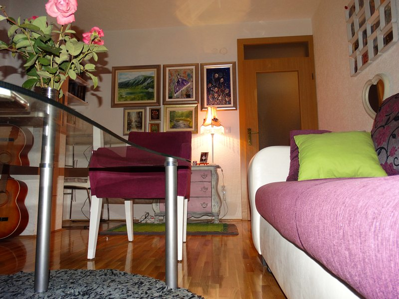 Apartment Branilaca, holiday rental in Semizovac