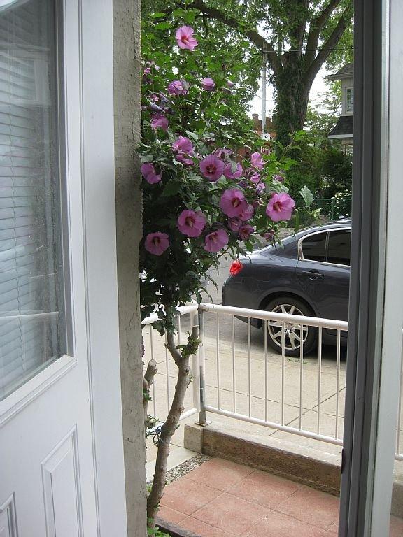 View from Guest Suite front door