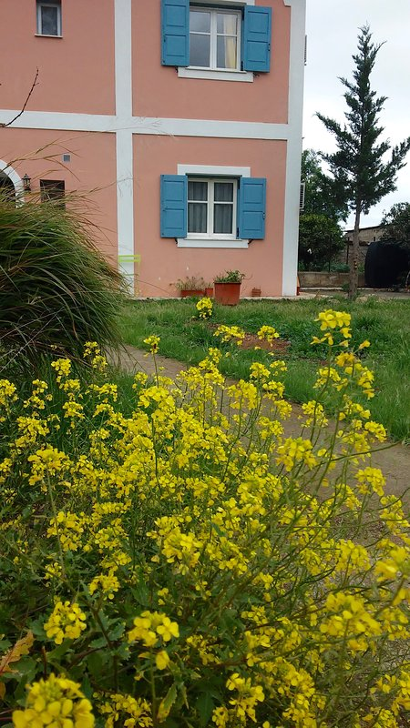 Violetta Studios Galaxi4 Self Catering studios fully equipped even for a long stay.25min from Delphi