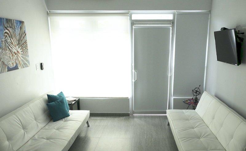 """Sala de estar. Dois sofás-cama que se abrem para o tamanho máximo. ar condicionado, ventilador de teto, 40 """"TV de tela plana,"""