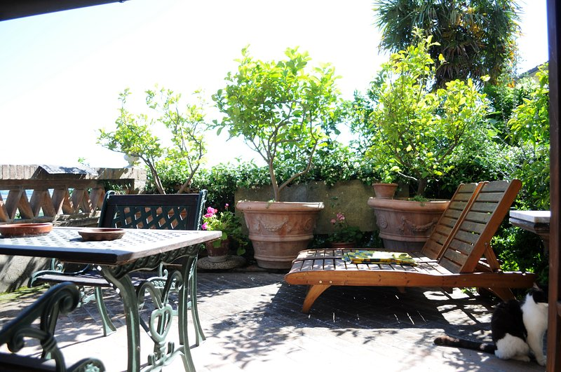 Appartamento Montacchita, holiday rental in Montechiari