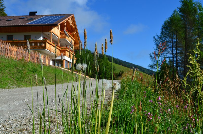 Apartments Oberpichlhof, holiday rental in Province of South Tyrol