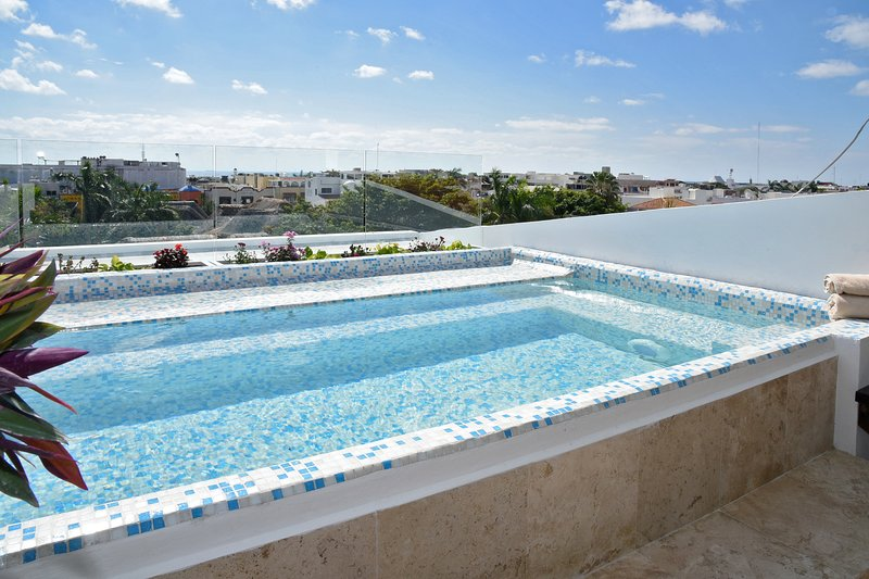 Private Rooftop Pool with view of the Ocean