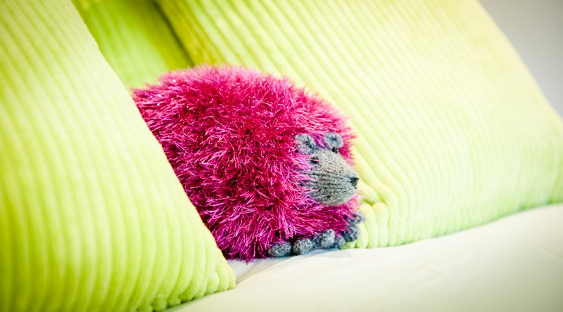 The Retreat for Couples is based at Hedgehog Corner!