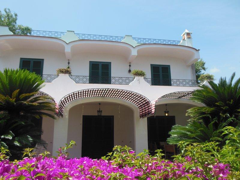 Villa Indipendente immersa nel verde, holiday rental in Ischia Porto