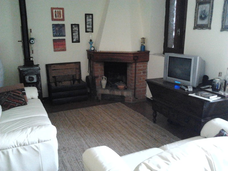 Fireplace and wood boiler
