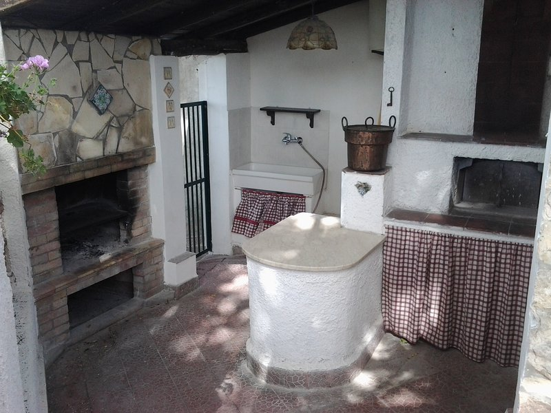 The rustic kitchen with barbecue, pizza oven, sink