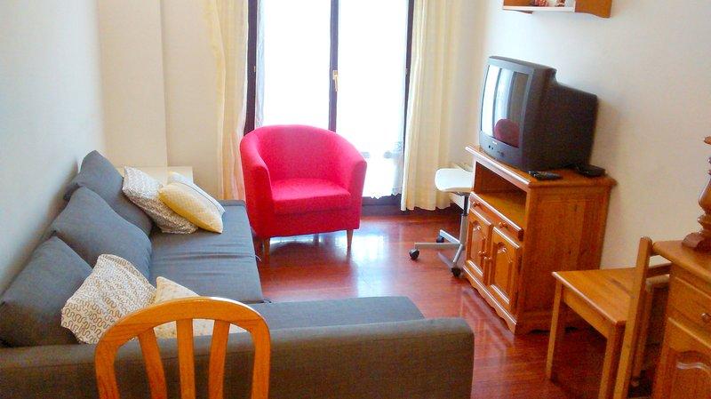 Apartamento 6 plazas 5 min playa WI FI, alquiler de vacaciones en Usurbil