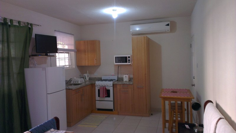 Air conditioned Studio Villa with a pool, holiday rental in Oistins
