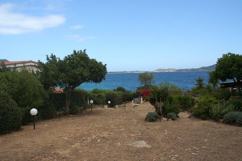 view from communal garden