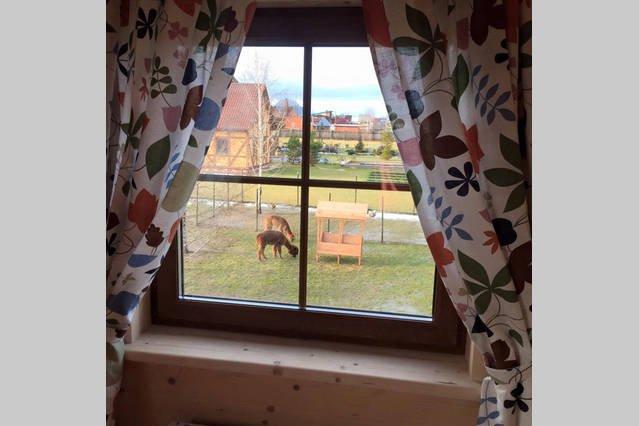 Guest house at Miniferma Pronino, holiday rental in Danki