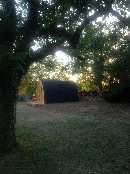 Chambre cabane aux étoiles