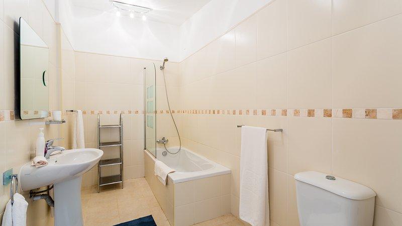 Grande salle de bains avec baignoire pleine grandeur, douche, lavabo et WC.