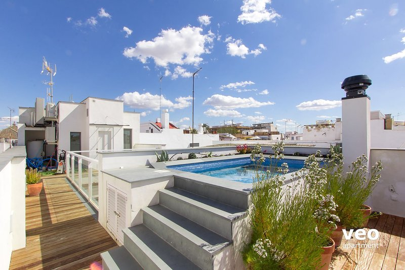 Teodosio Terrace. 3 bedrooms, 3 bathrooms, terrace & private pool, vacation rental in Seville