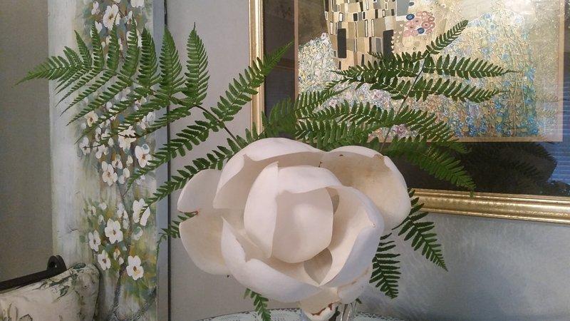 4 Magnolias maduros gracia de nuestra propiedad ... y aparecen de baño!