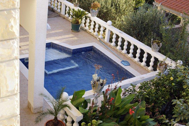 piscine (maison et environs)