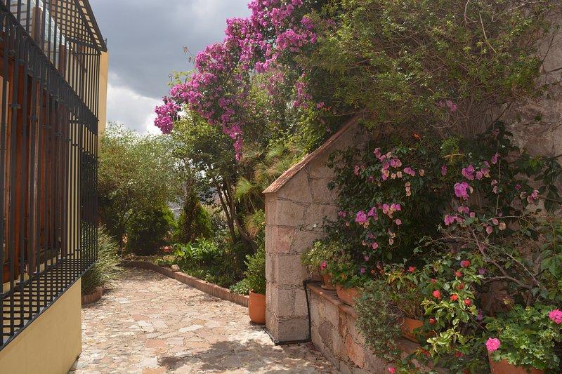 Bugamvillias añadir un montón de color y la piedra irradia estilo mexicano
