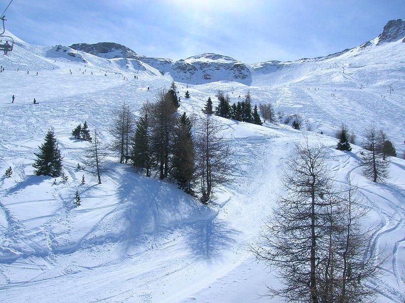 Skiing in January