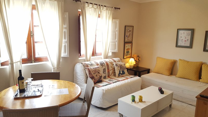 Apartamento Maya (La Laguna Centro), vacation rental in San Cristobal de La Laguna