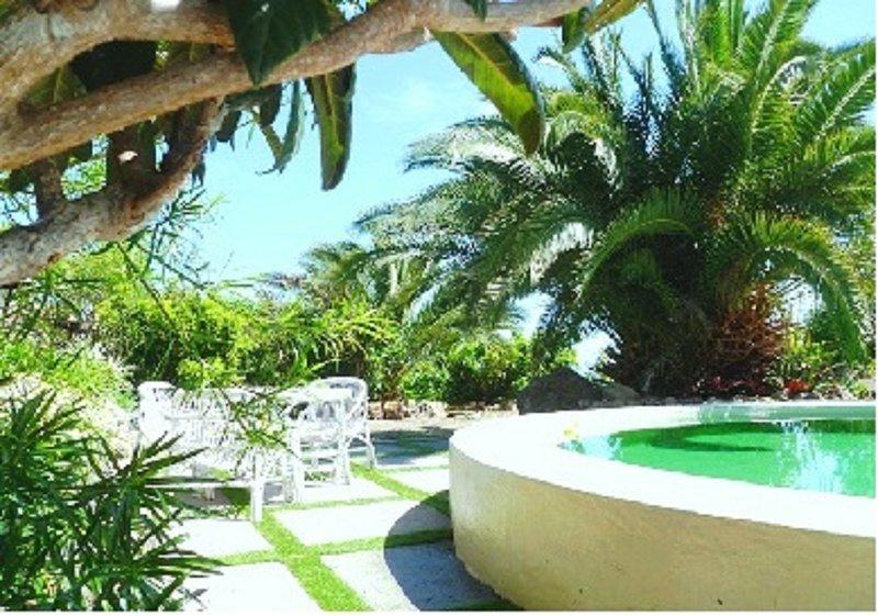 Grün lackiert Pool wher zum Schwimmen, Sonnenbaden oder ..just den Garten genießen und eine schöne Zeit haben.