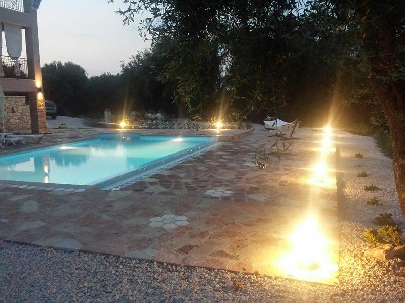 Privé Longueur piscine 9m et 4,5 m de largeur qui comprend un jacuzzi hydro-massage