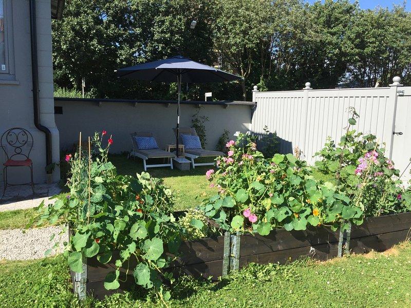 Jardim com sessão da tarde