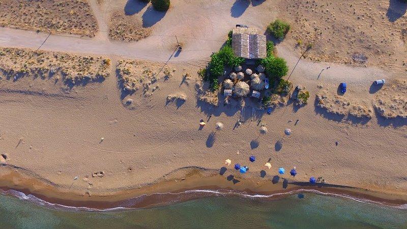 Beach Bar / PLAGE PRESERVEE