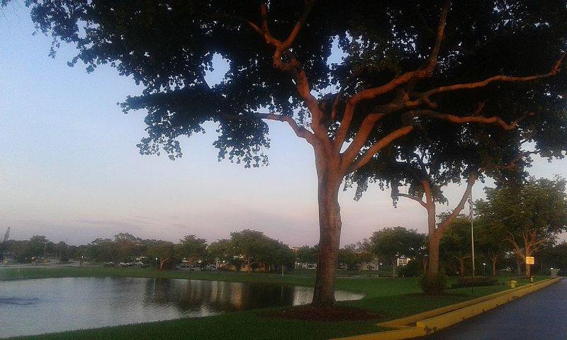 Apartment Rental Season.deerfield Beach Florida, holiday rental in Mulberry