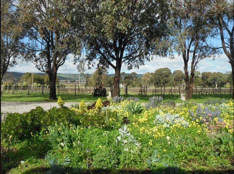 Linger Longer Vineyard - Apartment, holiday rental in Bowden