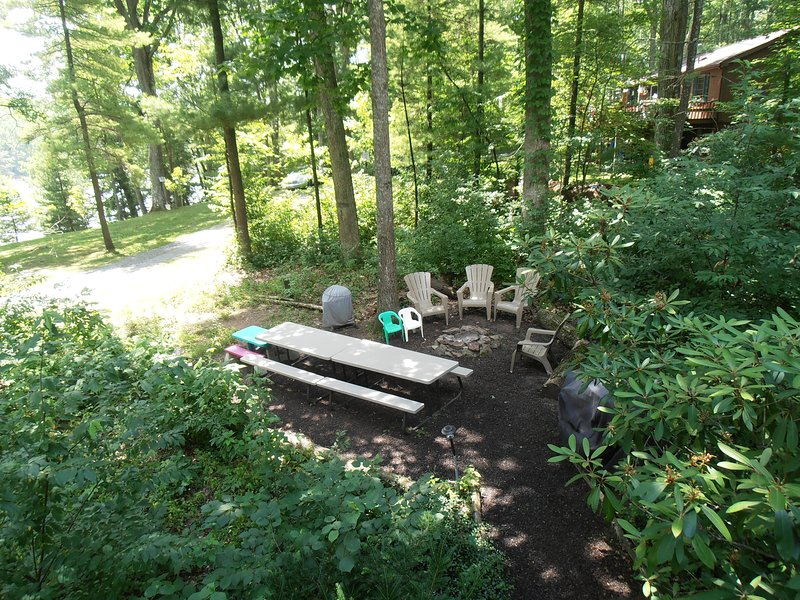 Picnic Area with gas grill, charcoal grill, fire pit