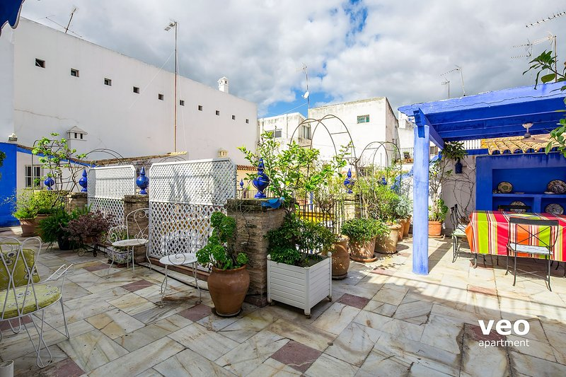 Private terrace decorated and equipped with plants,outdoor furniture and pergola with a dining table