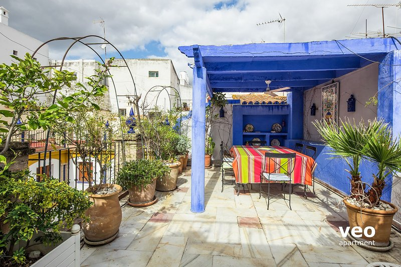 Alfalfa Terrace, Central 3-bedroom apartment, vacation rental in Seville