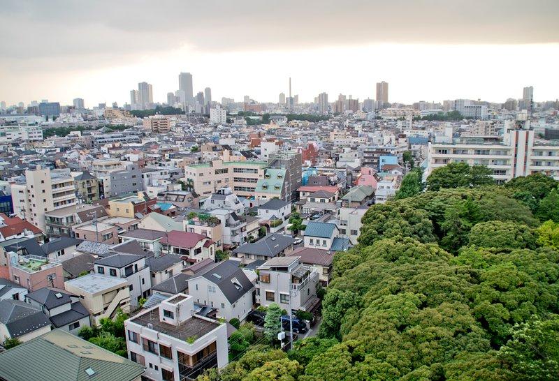 Cidade e vista para o jardim a partir da varanda