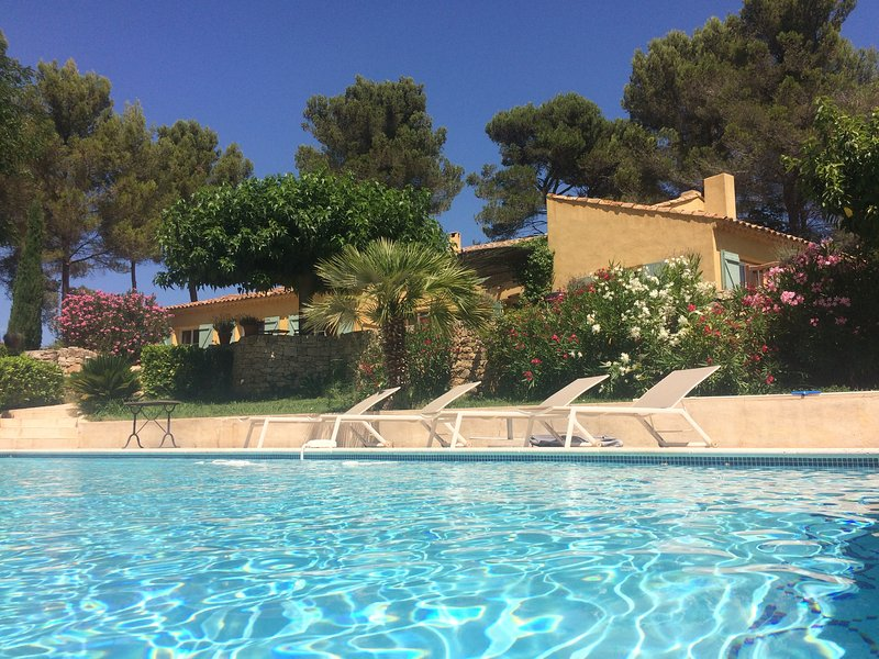 Pool, oleanders and villa Agarrus