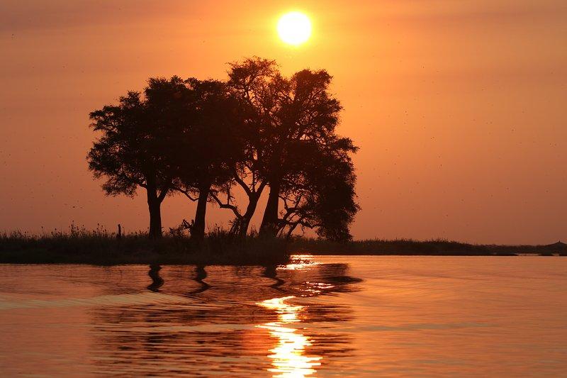 Chobe Sunset