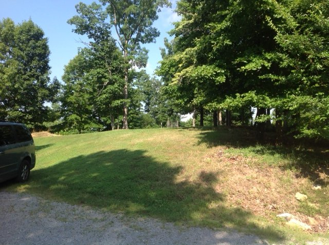 BlackBerry House, vacation rental in Fairview