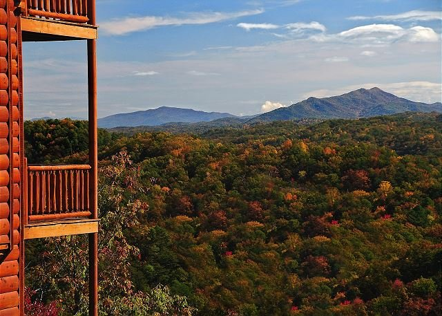 Fall View from Cabin
