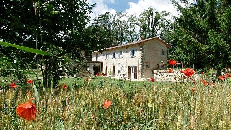 La Breccia di Anghiari, holiday rental in Citerna