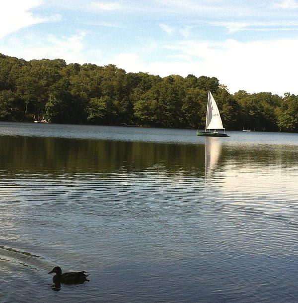 Sail i our pond