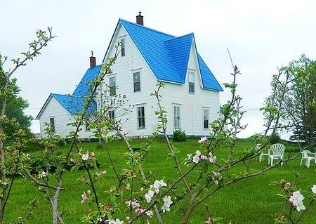 A cosy heritage house on 3 beautiful acres overlooking the bay of Fundy, minutes from downtown