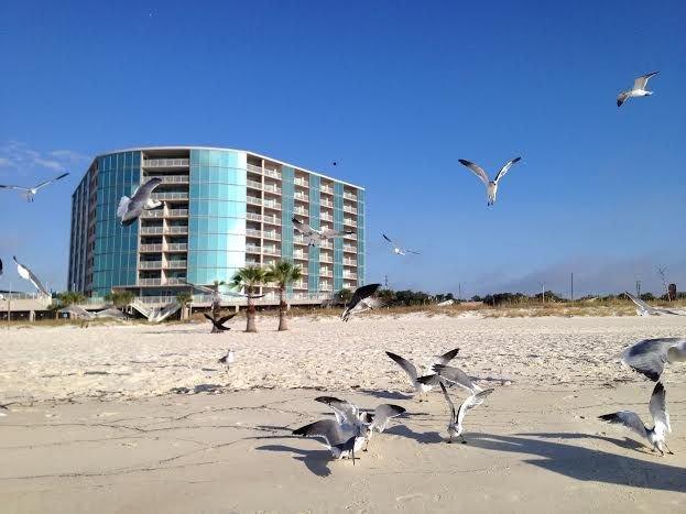 Top  Floor! Panoramic Views! On Beach! Fitness Center! Cabana Optional ! – semesterbostad i Biloxi