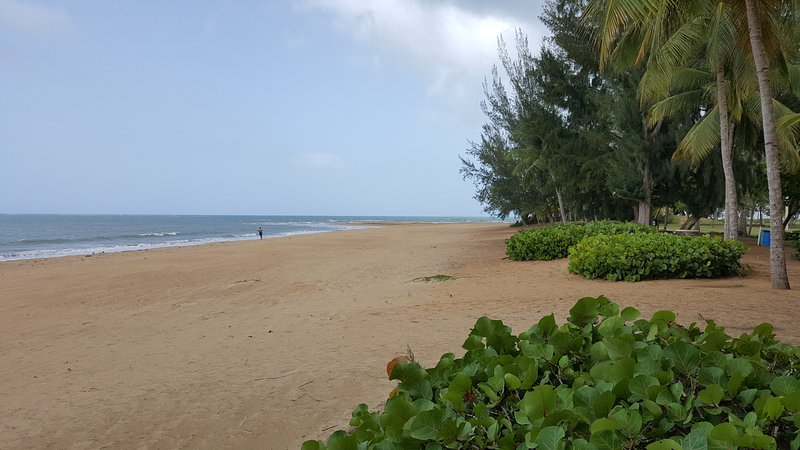 Miles of pristine beach with shallow, warm waters.