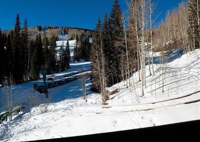 View of the ski runs and Alpine Slide (Summer) from main deck
