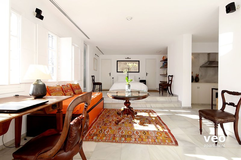 The apartment comprises one large open space with room for 2-4 guests.